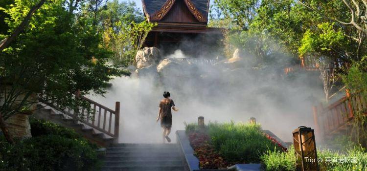 Qicai Yunnan Gudian Hot Spring Villa1