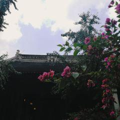燕譽堂用戶圖片