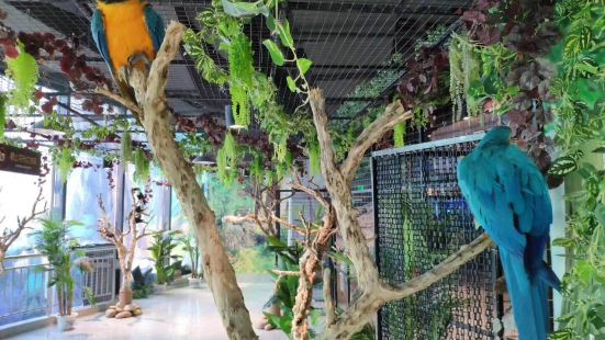 甜甜灣自然探索中心