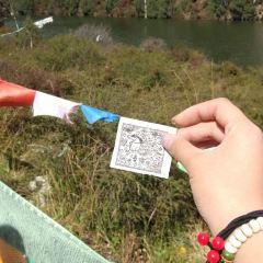 達爾宗湖用戶圖片