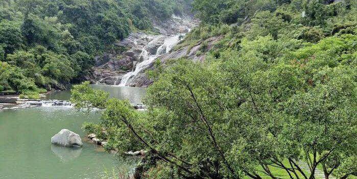 Zhonghai Huizhou Tangquan