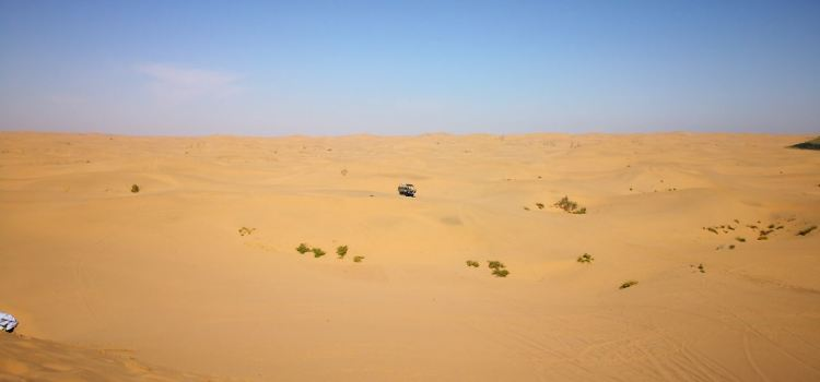 騰格里沙漠天鵝湖2
