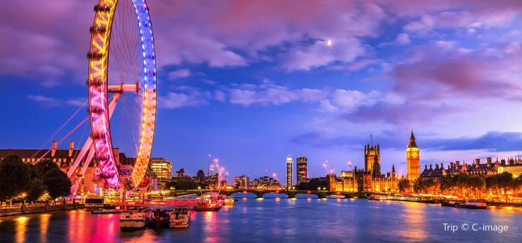 The London Eye3