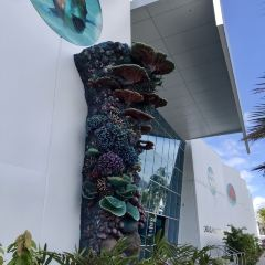 Cairns Aquarium User Photo