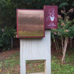 白雲山公園用戶圖片