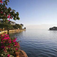 島依旁漁村用戶圖片