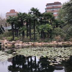 Caoyang Park User Photo