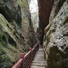 翠微峰國家森林公園用戶圖片
