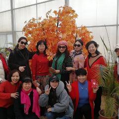 湖南省帝富萊原生態農業專業合作社用戶圖片
