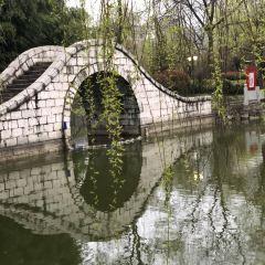 鳳池園用戶圖片