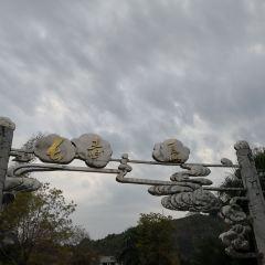 巴馬長壽島用戶圖片
