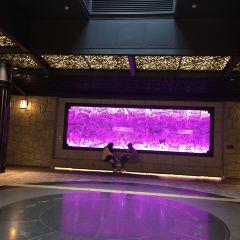 Tenjin Underground Shopping Center User Photo