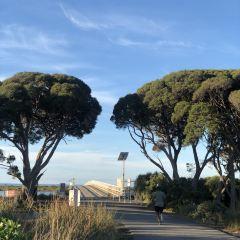 Phillip Island Nature Park User Photo