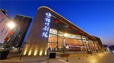银川剧院-银川-AIian
