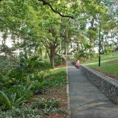 King Edward Park User Photo