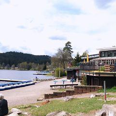 Lake Titisee User Photo