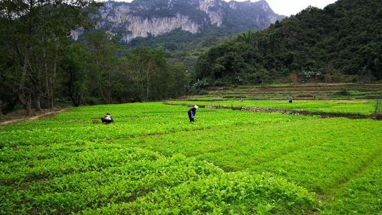 Bamei Village