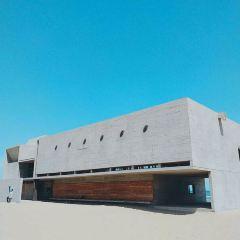 Anaya Library User Photo