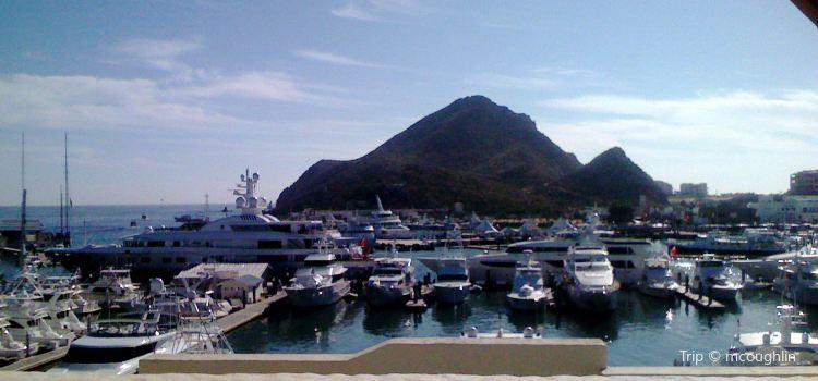 Marina Cabo San Lucas1