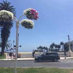 Docas beach用戶圖片