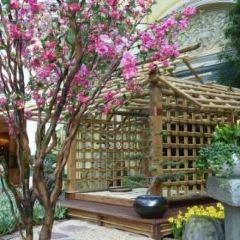 貝拉吉歐溫室植物園用戶圖片
