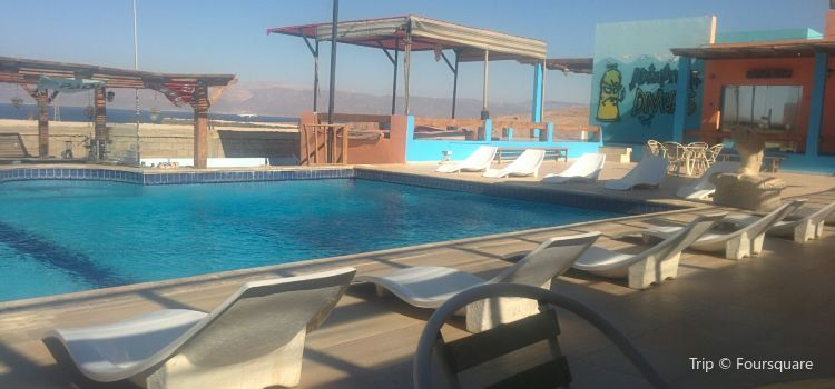 Aqaba Adventure Divers1