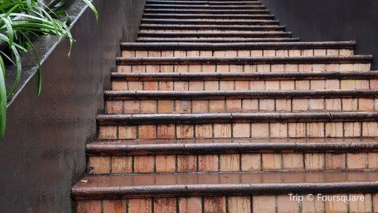 Plimmer Steps