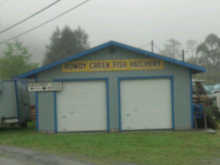 Rowdy Creek Fish Hatchery | Tickets, Deals, Reviews, Family