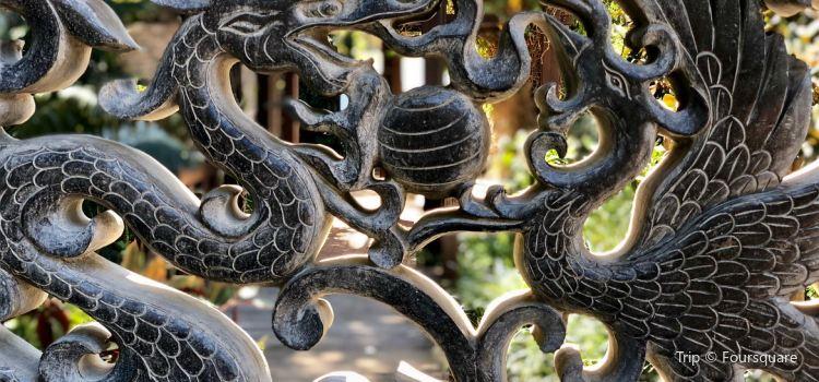 Hervey Bay Botanic Gardens1