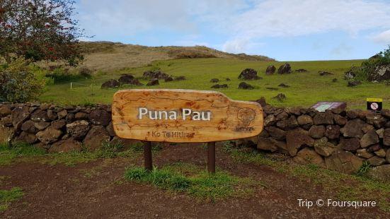 Puna Pau