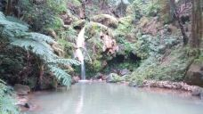 Caldeira Velha-亚速尔群岛