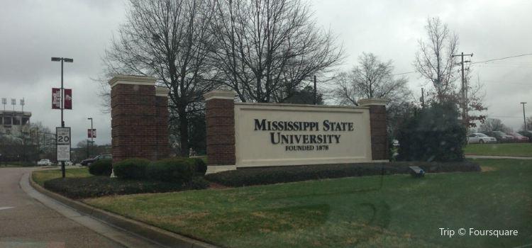 Mississippi State University2