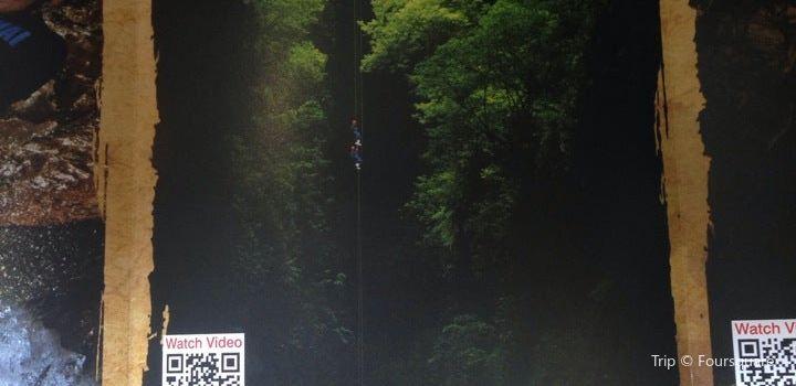 Waitomo Adventures3