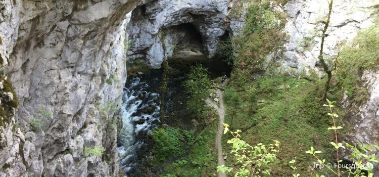 Rakov Škocjan Valley2