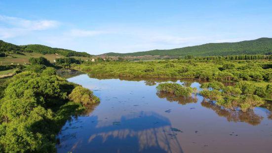 雁鳴湖濕地