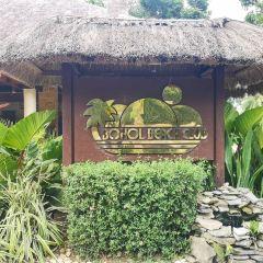 Bohol Beach Club User Photo