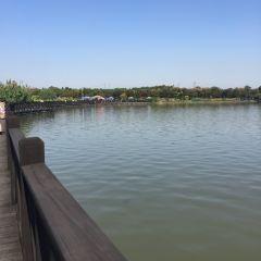 金倉湖公園用戶圖片