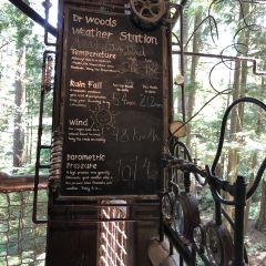 卡佩蘭奴吊橋公園用戶圖片
