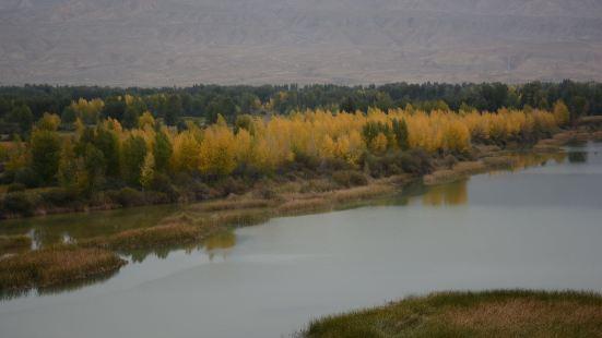 千姿湖(黃河清濕地公園)