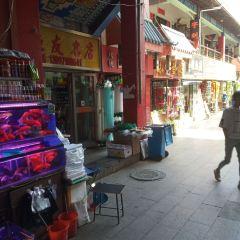 QingHaiSheng XiNingShi YuanLin WenHuaJie BuXingJie User Photo