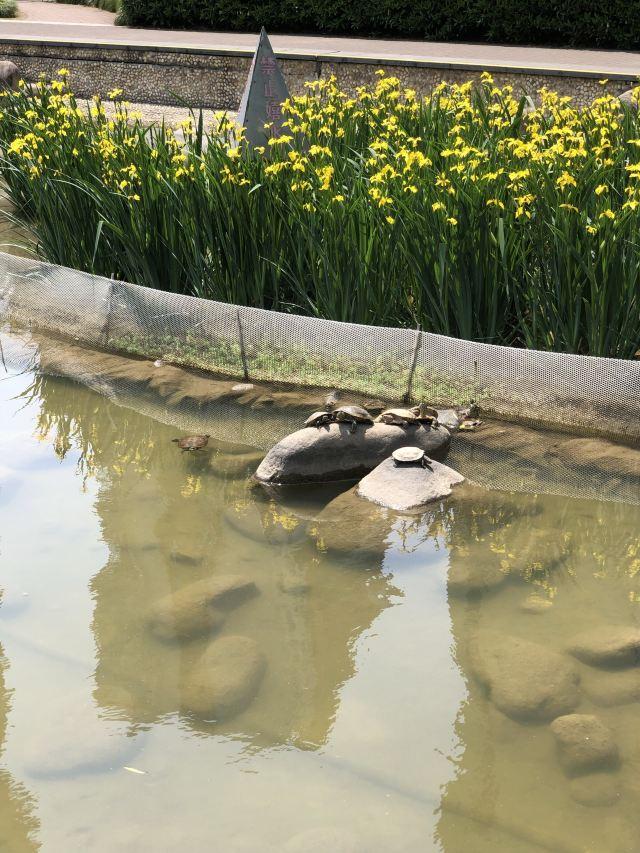 Xianghe Park