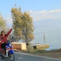 環洱海騎行用戶圖片