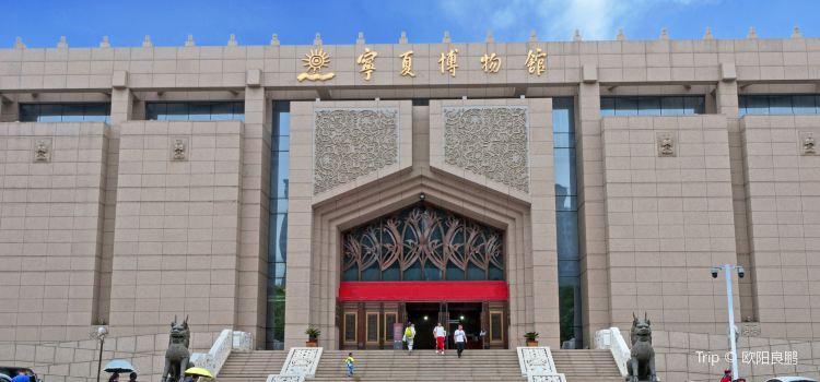 寧夏博物館1