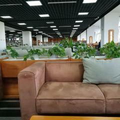 鄂爾多斯市圖書館用戶圖片
