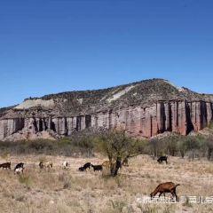 Talampaya National Parks User Photo