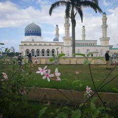 沙巴州立清真寺用戶圖片