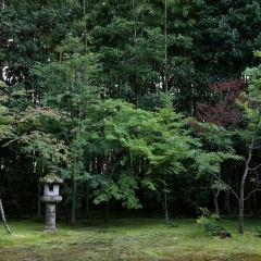 高桐院用戶圖片