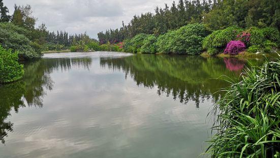 海尾濕地公園