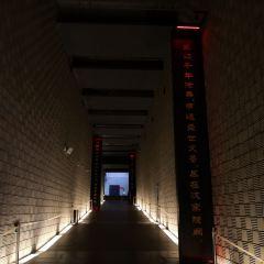 漢陽陵博物館用戶圖片