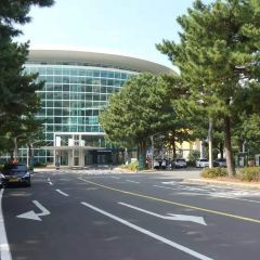 Jeju International Convention Center User Photo